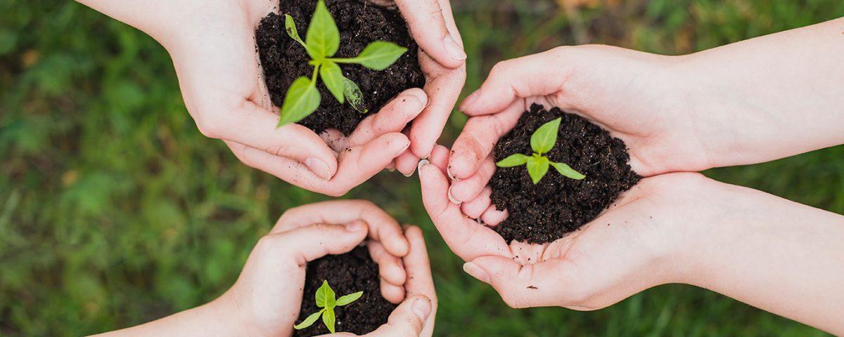 ações para fazer em casa e melhorar o meio ambiente